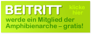 Beitritt