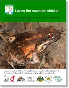 Mountain Chicken Recovery Plan