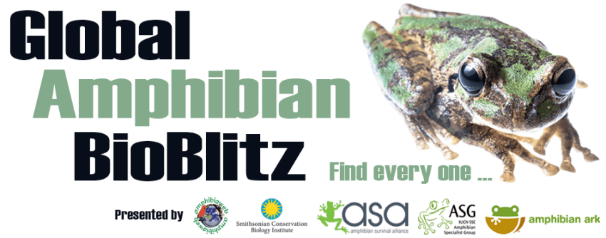 Global Amphibian Bioblitz