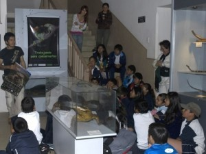 School children learning about amphiban conservation at the Museo de Historia Natural Alcide d'Orbigny in Cochabamba, Bolivia.