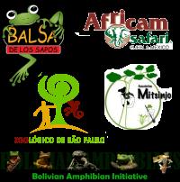 5 fundraising partners