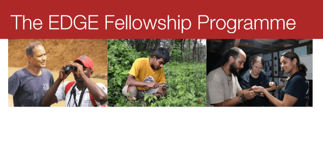 EDGE Fellowship