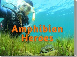 Amphibian Heroes