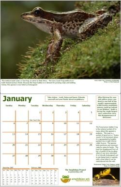 AArk calendar