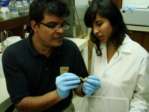 Sam Rivera examines a frog