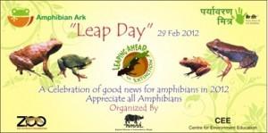 Banner made for the Leap Day amphibian program.