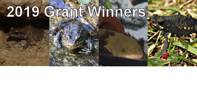 2019 seed grant winners