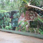 External view of Taudactylus container at Currumbin Sanctuary, Australia