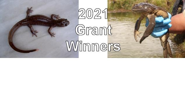 2021 grant winners